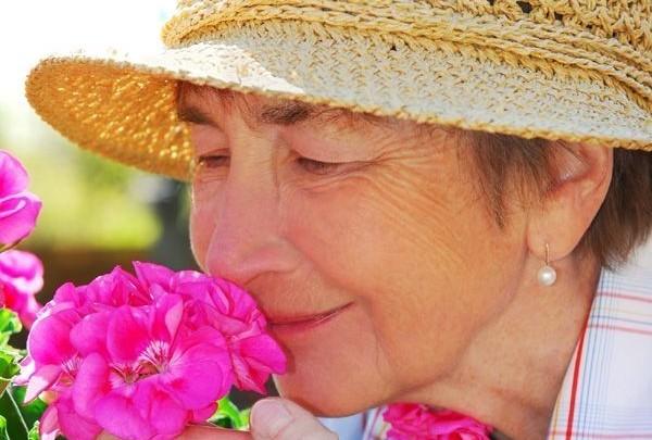 žena,květina,čichání,vůně,zahrádka,