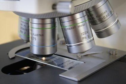 mikroskop, histologie, patologie, preparát