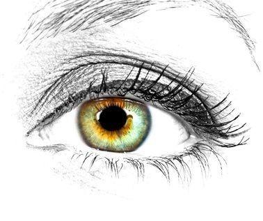 krásné oko