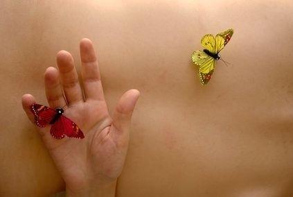 tělo, motýly