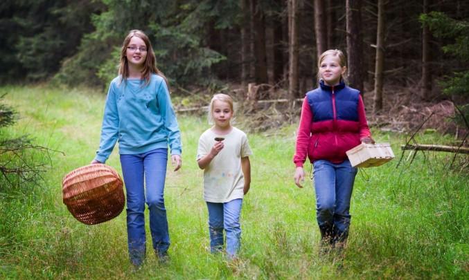 děti v lese hledají houby