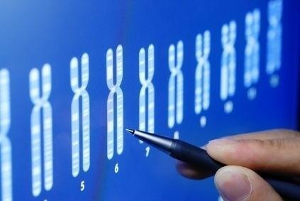 Výběr chromozomů