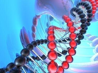 DNA, genetika, dědičná informace, dvojšroubovice, dědičnost