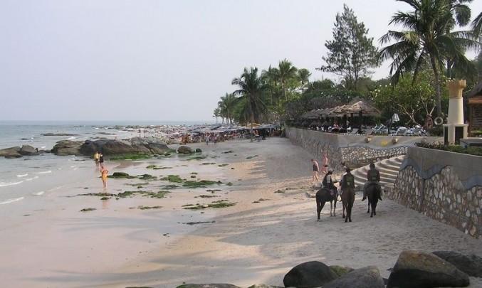 pláž, moře, koně