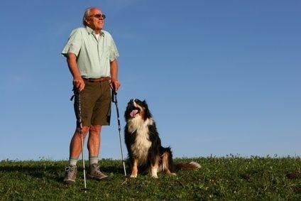 Nordic walking,muž,senior,chůze,sport