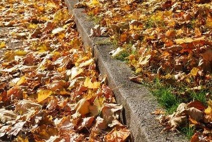 Listí na chodníku