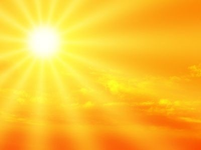 Slunce žluté