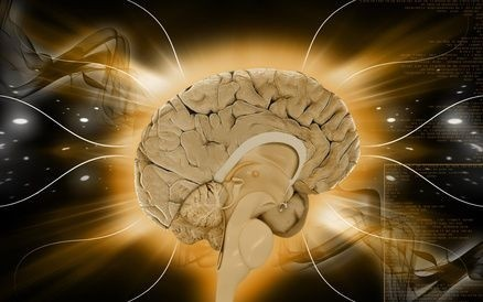 mozek_soustava