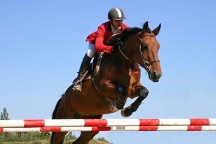 žokej, parkur, dostihy, jízda na koni, kúň, závody, soutěž