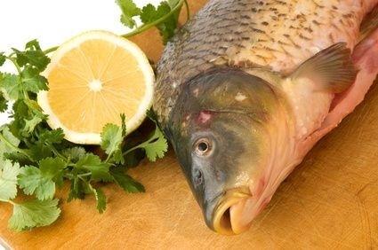 Kapr,vánoce,ryba
