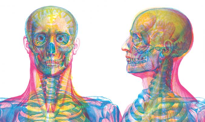 Kniha anatomie
