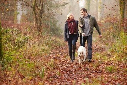pes,procházka, podzim