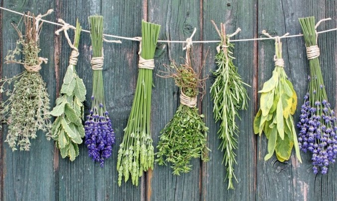 různé druhy svázaných bylinek