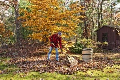 hrabání listí, podzim