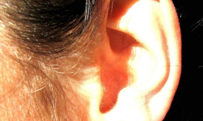 ucho, žena, sluch