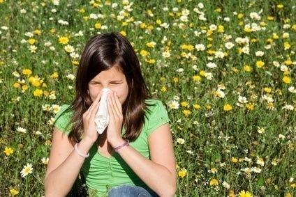 Žena, heřmánek, alergie,rýma, senná rýma