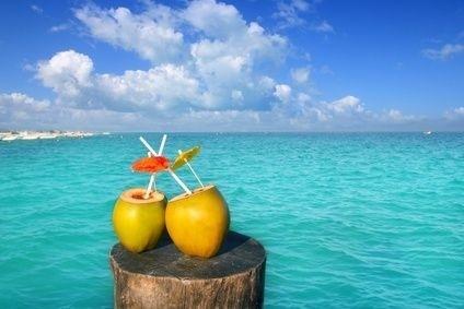 Dva kokosy v Tichomoří