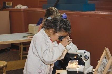 holčička, mikroskop, vědec, laboratoř, zkoumat, škola
