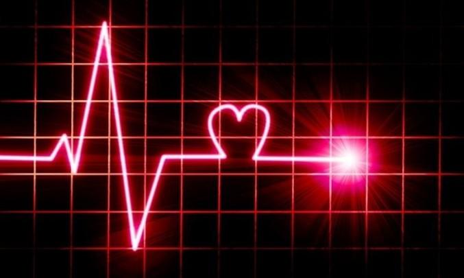 Srdce,EKG,
