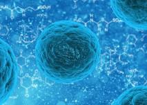 rakovina_bunka_mikroskop