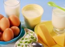Vejce a mléčné výrobky