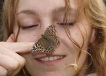 Motýl na nose
