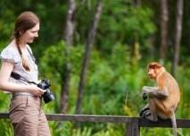 opice, zena, dovolena