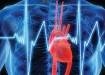 Srdce,srdeční,EKG