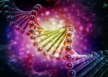 dna_genetika