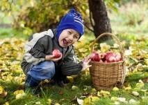 dítě na zahradě