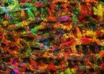 bakterie_plisne