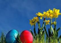 velikonoční vajíčka, zelený trávník