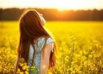 slunce, leto, opalovat se, repka