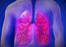 plice_astma