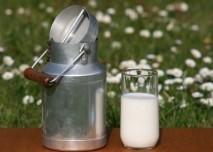 Mléko na louce