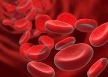 červené krvinky, buňky