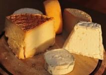 plísňový sýr, různé druhy