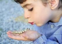 dítě s larvou motýla