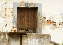 Dům s plísní