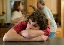 Domácí krize
