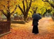 hřbitov na podzim