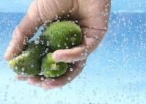 Mytí ovoce