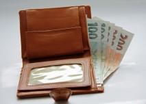české peníze