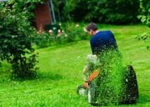 sekání trávy sekačkou