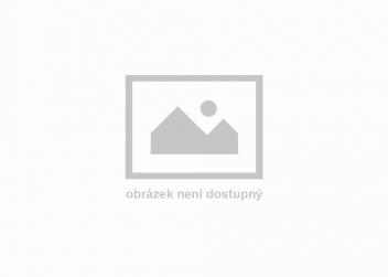 Bechtěrev,Bechtěrevova nemoc,choroba,Karel,Čapek,Karel Čapek,bechtěrevik,muži,celoživotní,léčba,komplexní,Sedláčková,Šebek,studio,Zet,rádio,BBC
