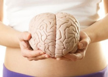 Mozek v ruce
